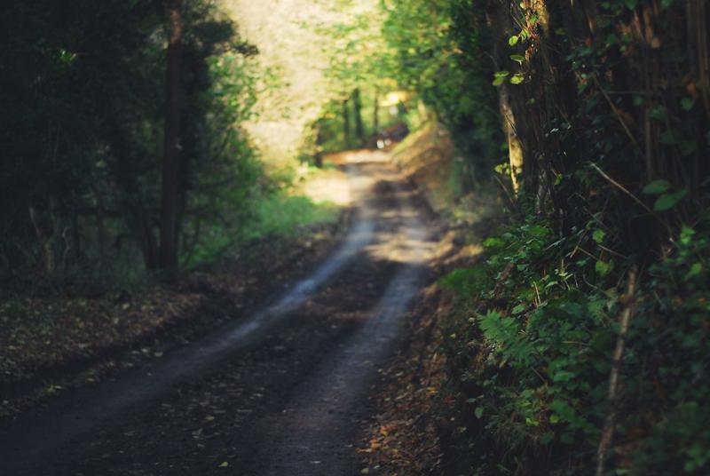 Autumn Country Walk