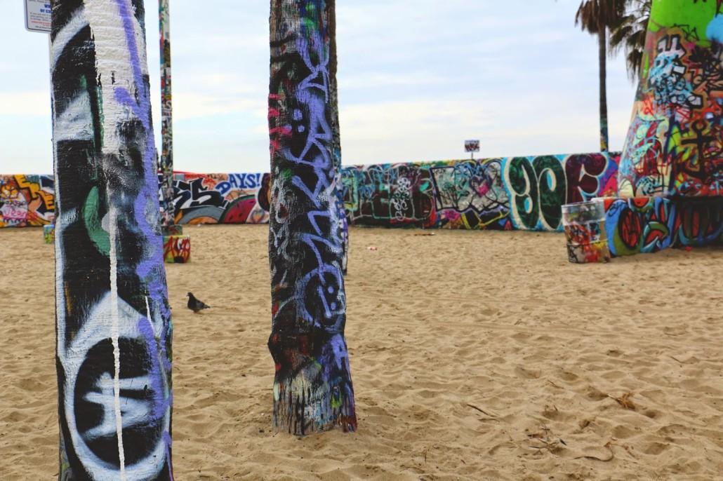 ACR - Venice Beach 2
